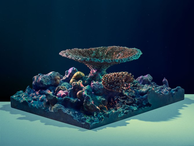 20150513 WIRED 3D Printed Coral, painted by Cosmo Wenman