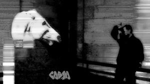 Scanning_Head_of_Horse_of_Selene_logo